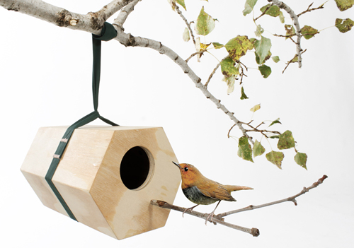 Neighbirds-1